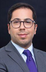 Laurent decorps dws investments multifamily investment fund placement memorandum